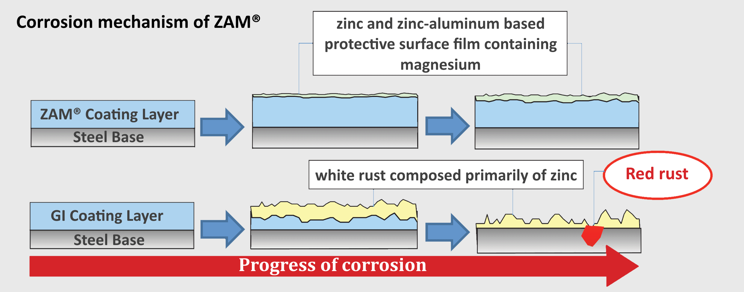 Illustration of the slower progress of corrosion of ZAM® as compared to Galvanized