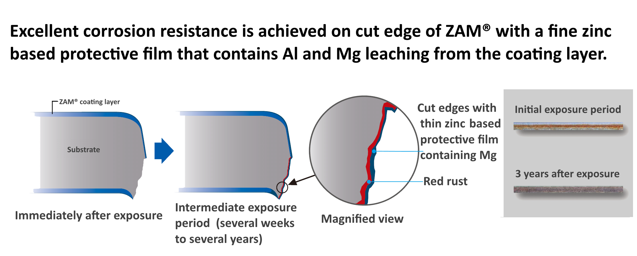 Illustration of excellent corrosion resistance achieved on cut edge of ZAM®